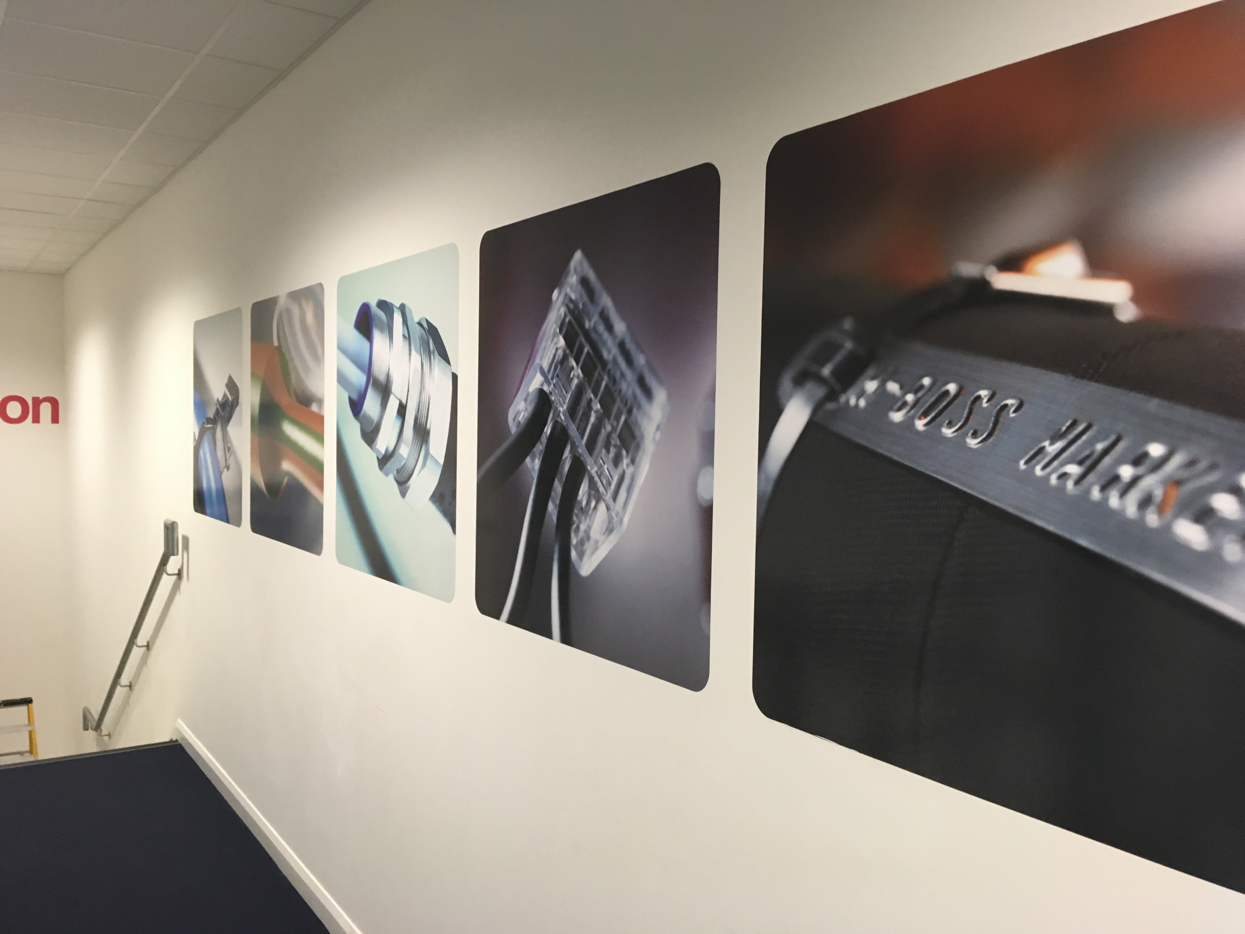 Self-adhsive wall art vinyl printed in full colour and applied to the freshly painted walls.